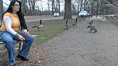 Beth feeds geese at a park