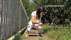 Roxy peeing on a suburban pathway